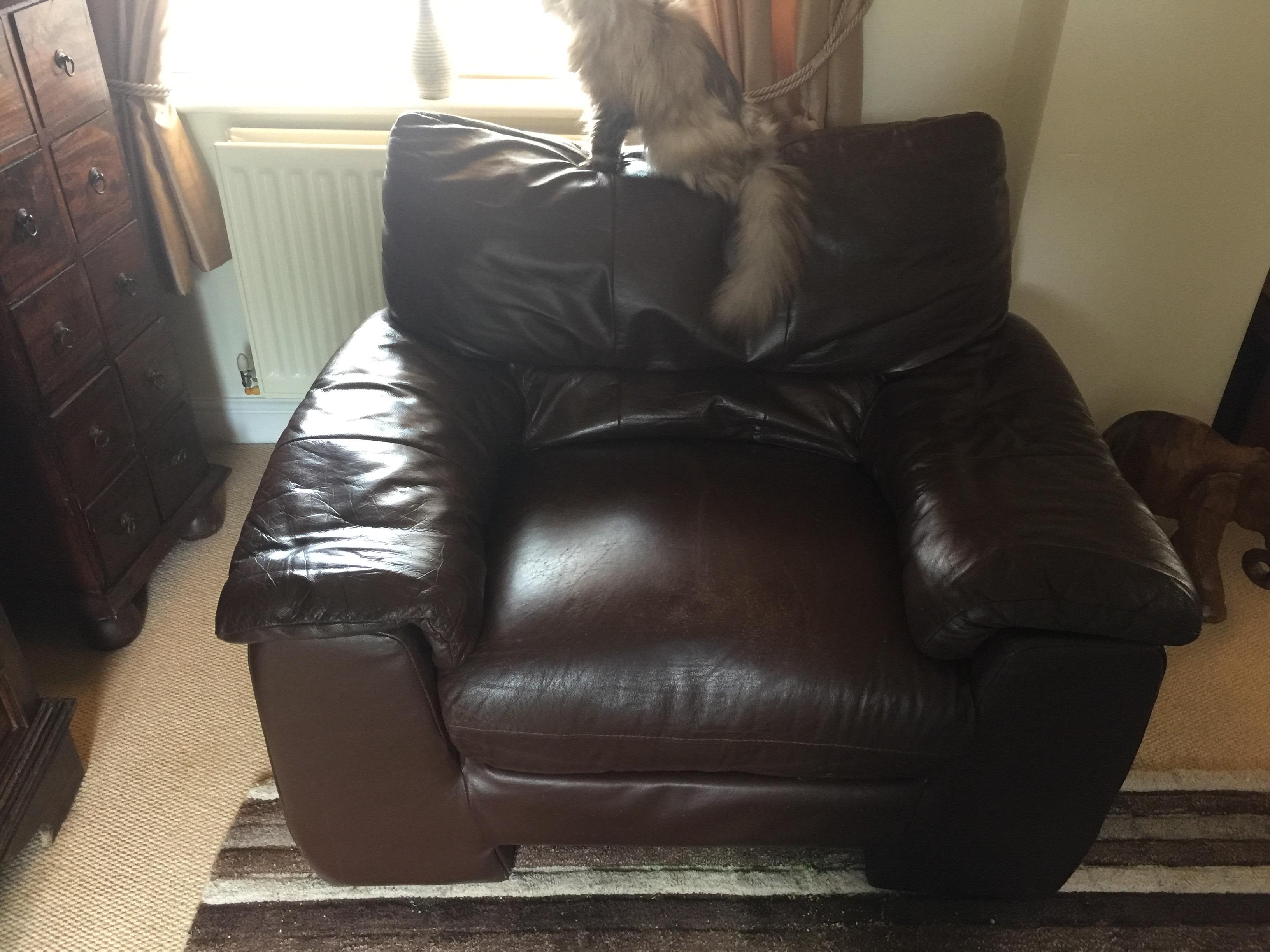 Flat Seat Cushion